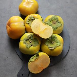 [과일]단감